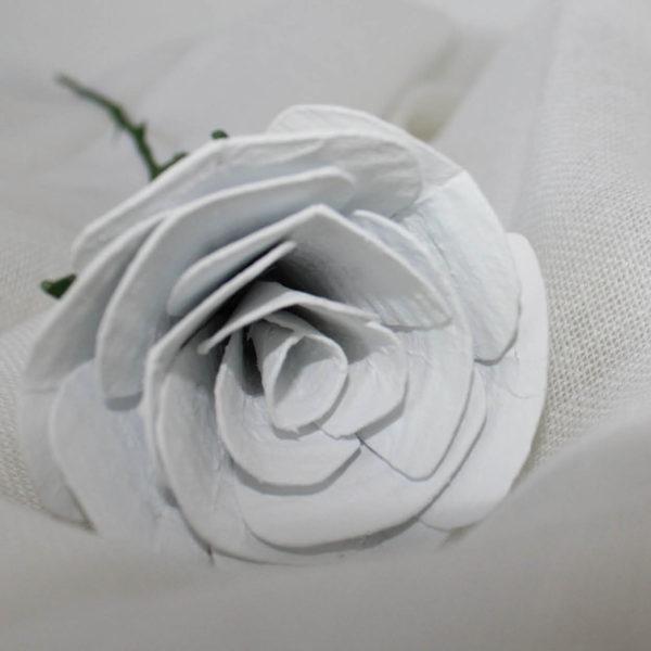 rosablanca3