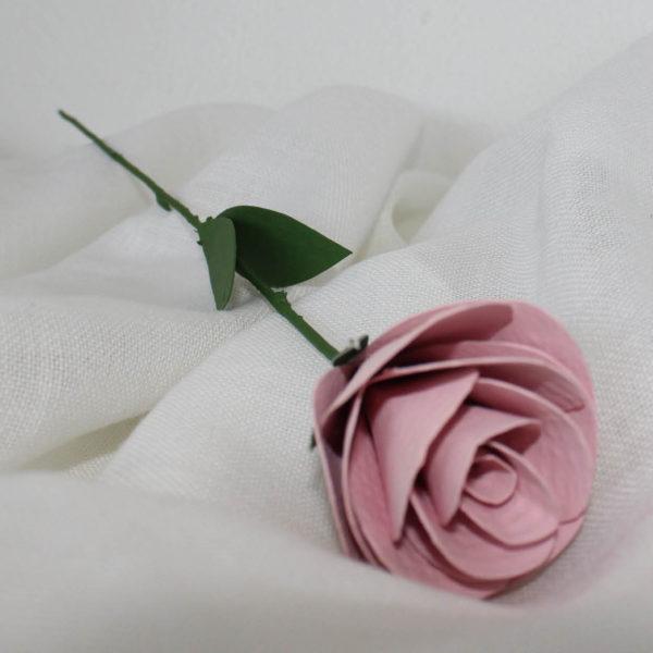 rosarosa2