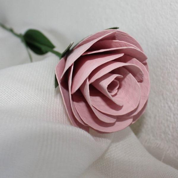 rosarosa4