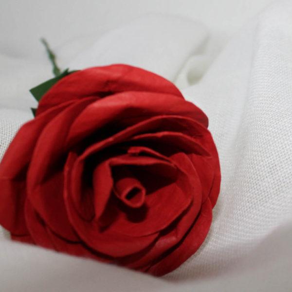 rosavermella3