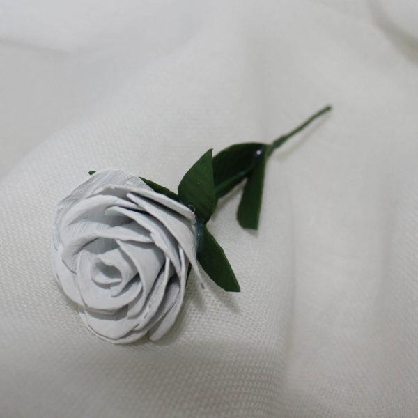 rosetablanca