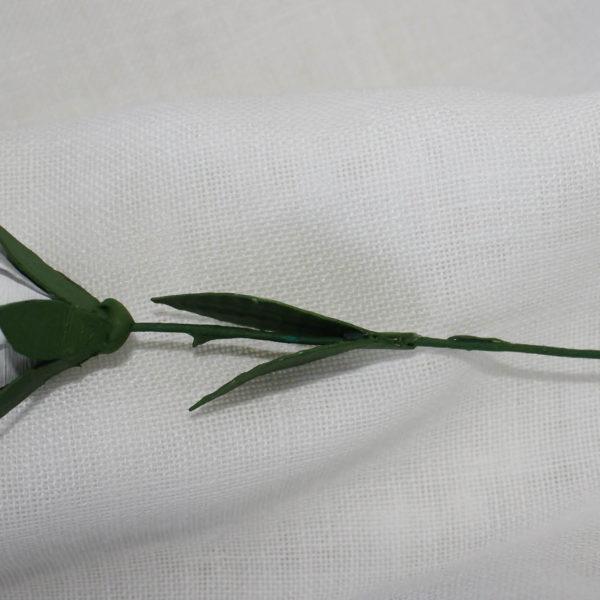 rosetablanca2