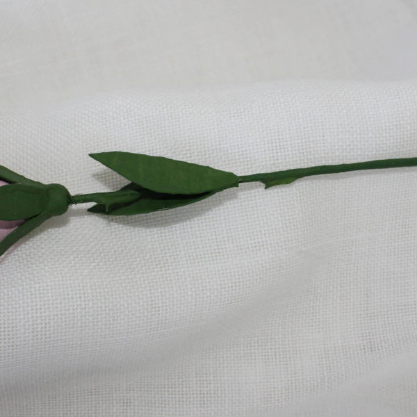rosetarosa2
